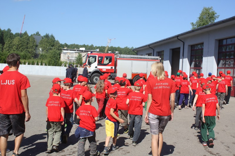 jaunasis-gelbetojas-2013-005
